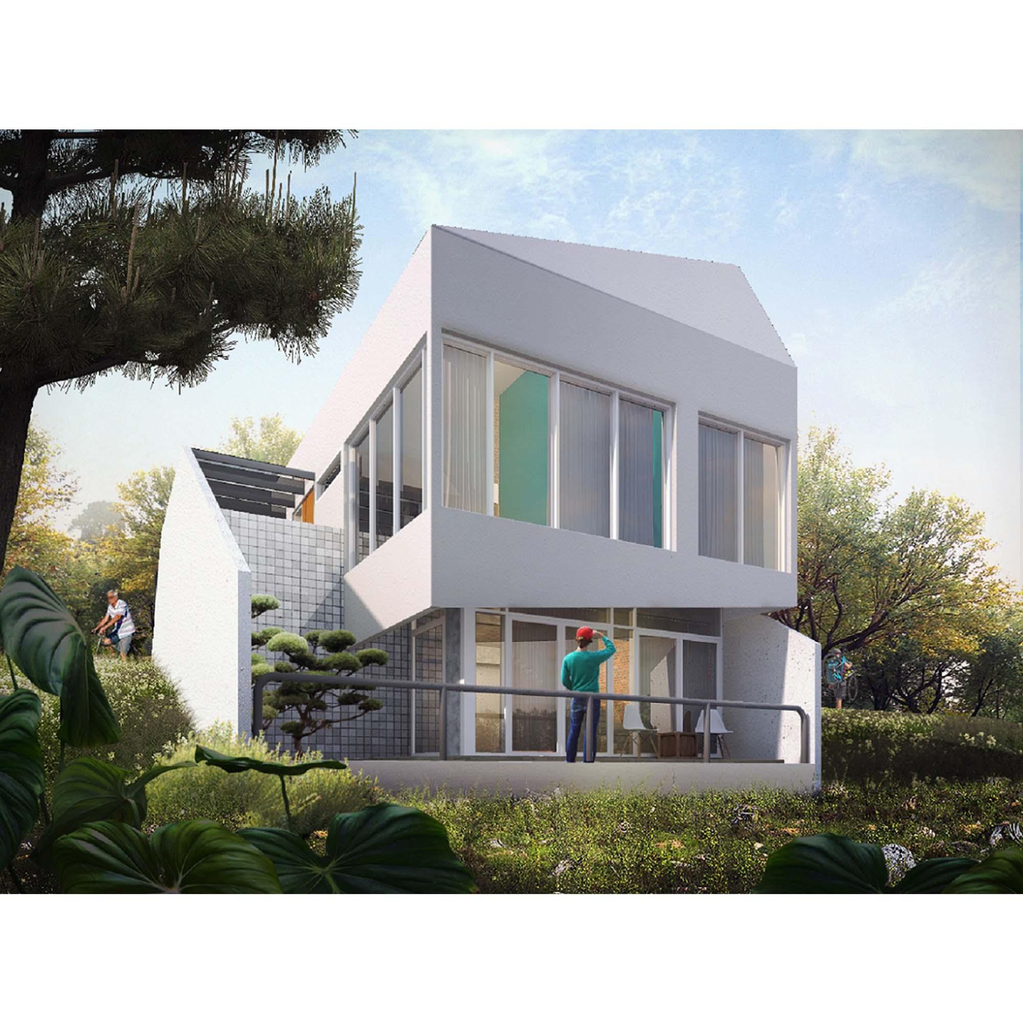 D HOUSE (2)